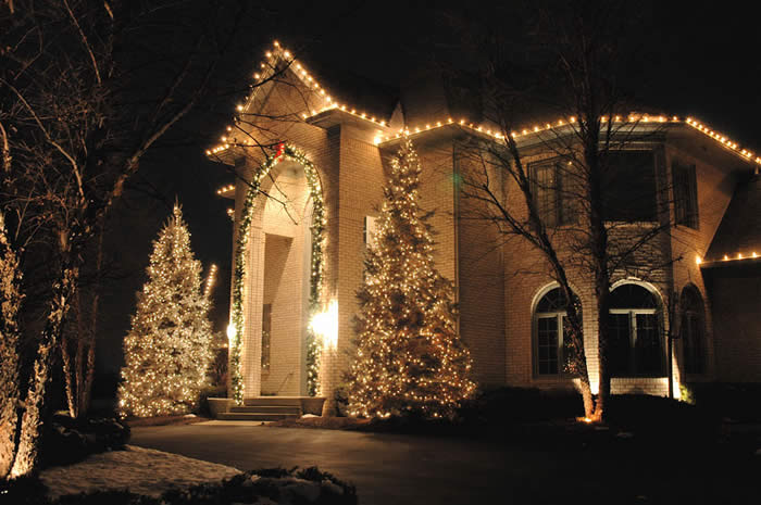 House Large Clear Frosted C9 Size Bulbs